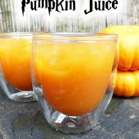 Pumpkin Juice - Harry Potter Copycat Recipe