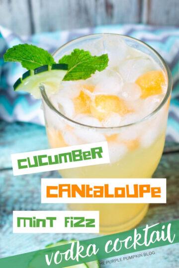 Cucumber-Canatloupe-Mint-Fizz-Vodka-Cocktail