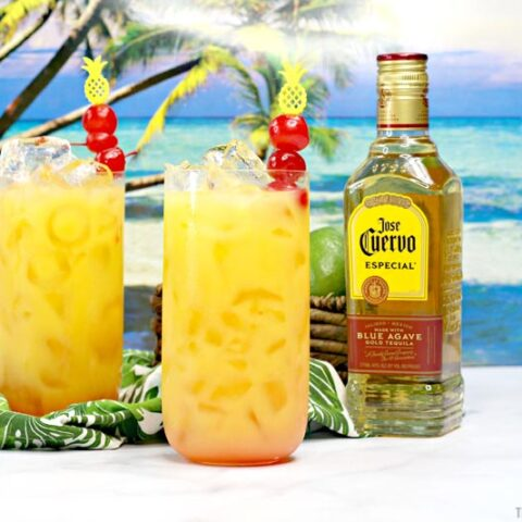 Hawaiian Margaritas