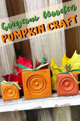 Gorgeous-Wooden-Pumpkin-Craft