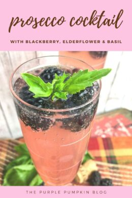 Prosecco cocktail with blackberry, elderflower and basil