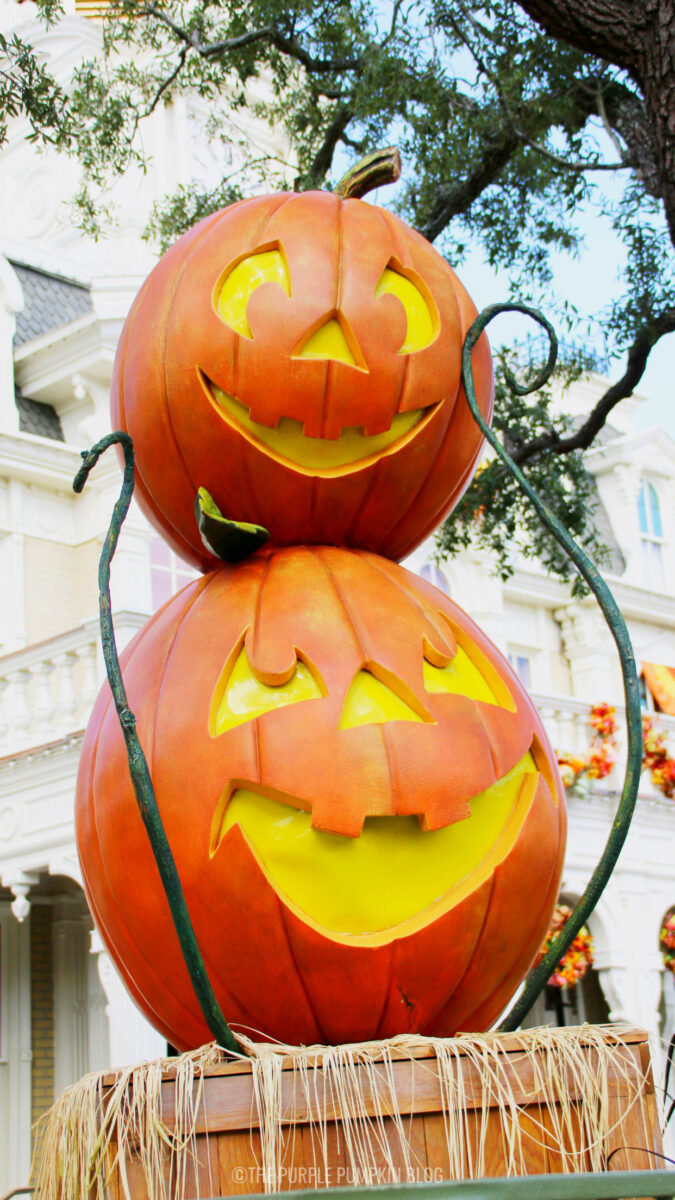 Pair of Pumpkins Wallpaper