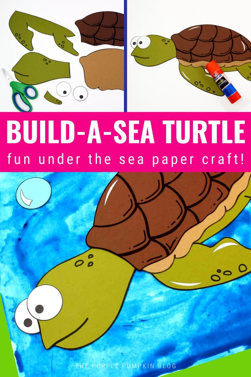 Build a Sea Turtle - Fun Ocean Craft