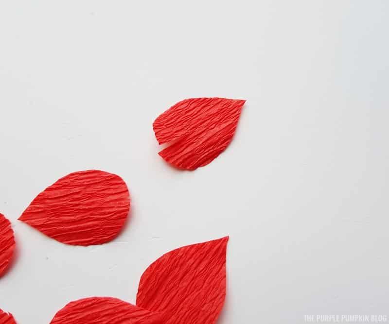 Slits cut into petals