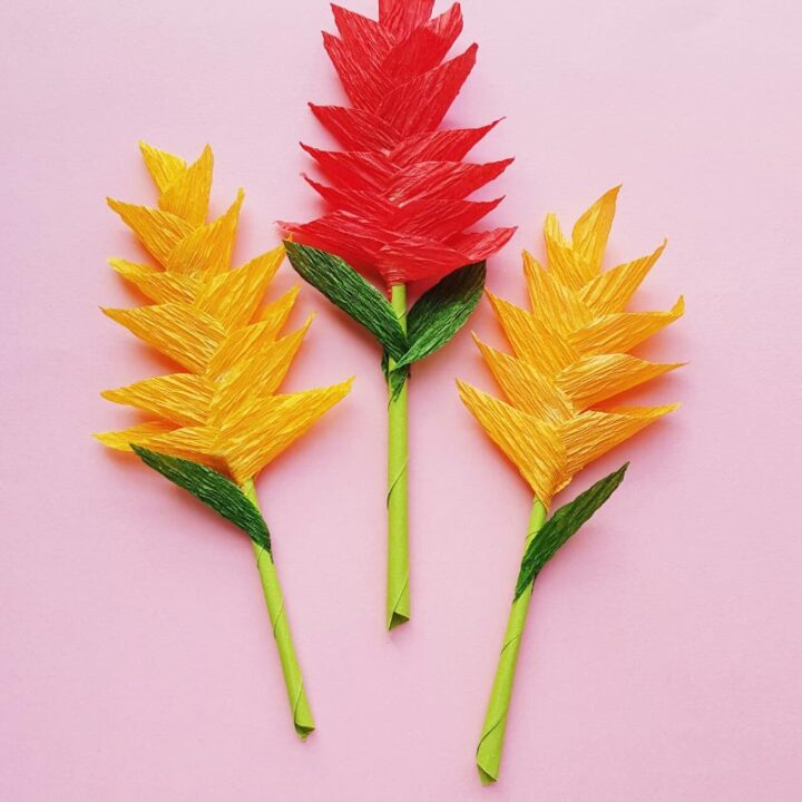 Crepe Paper Ginger Flowers Craft