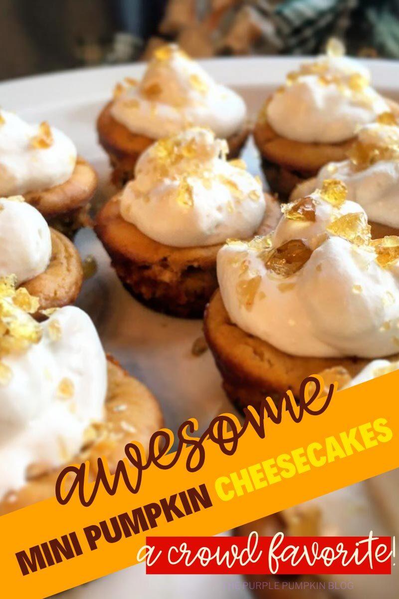 Awesome Mini Pumpkin Cheesecakes