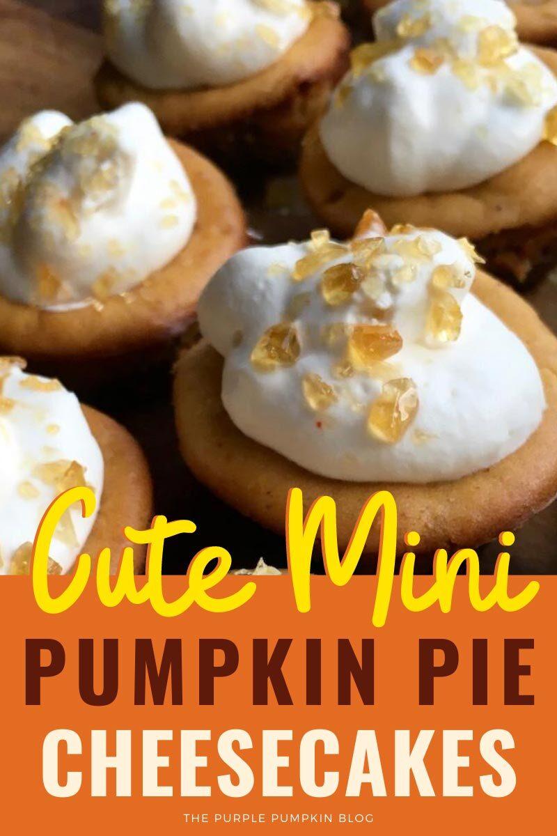 Cute Mini Pumpkin Pie Cheesecakes