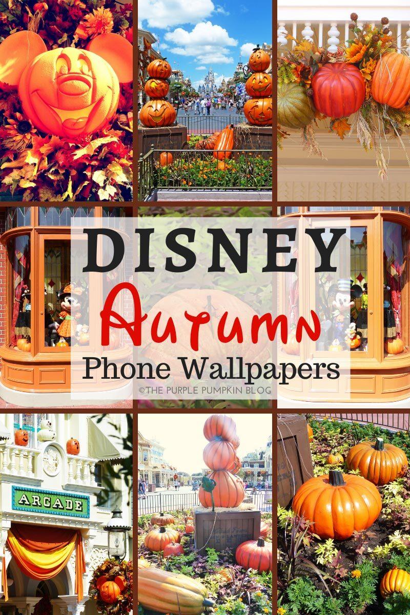 Disney Autumn Phone Wallpapers