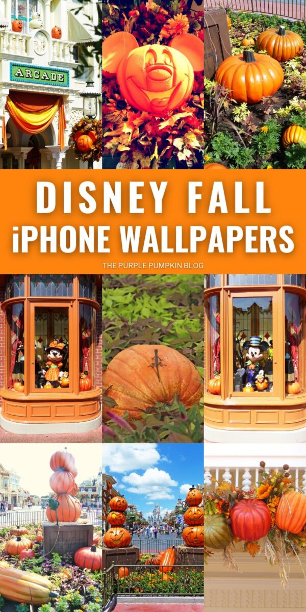 Disney Fall iPhone Wallpapers