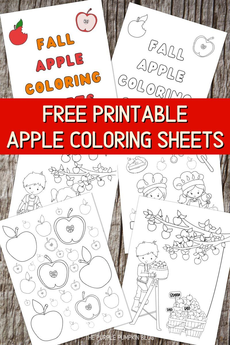 Free Printable Apple Coloring Sheets