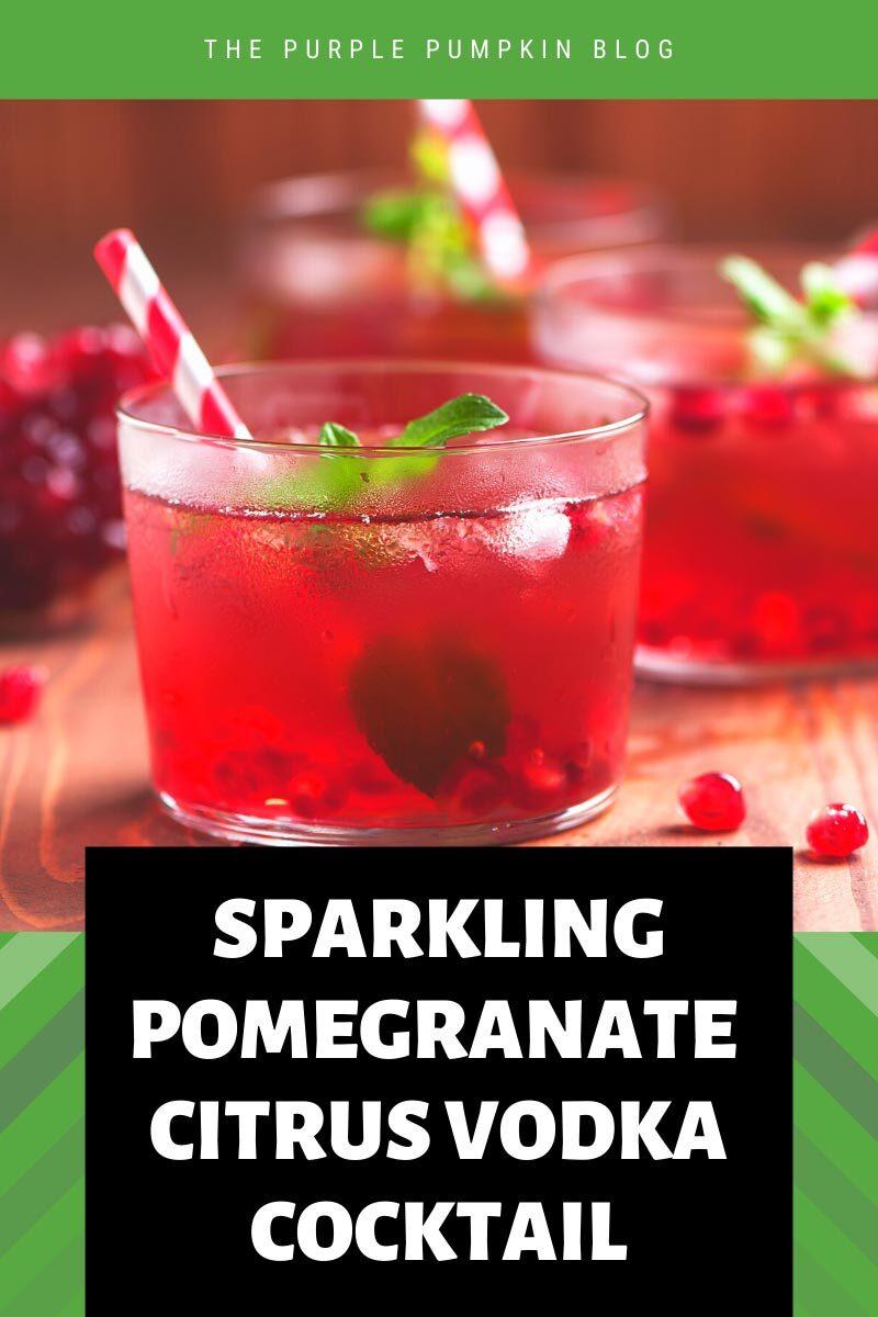 Sparkling Pomegranate Citrus Vodka Cocktail