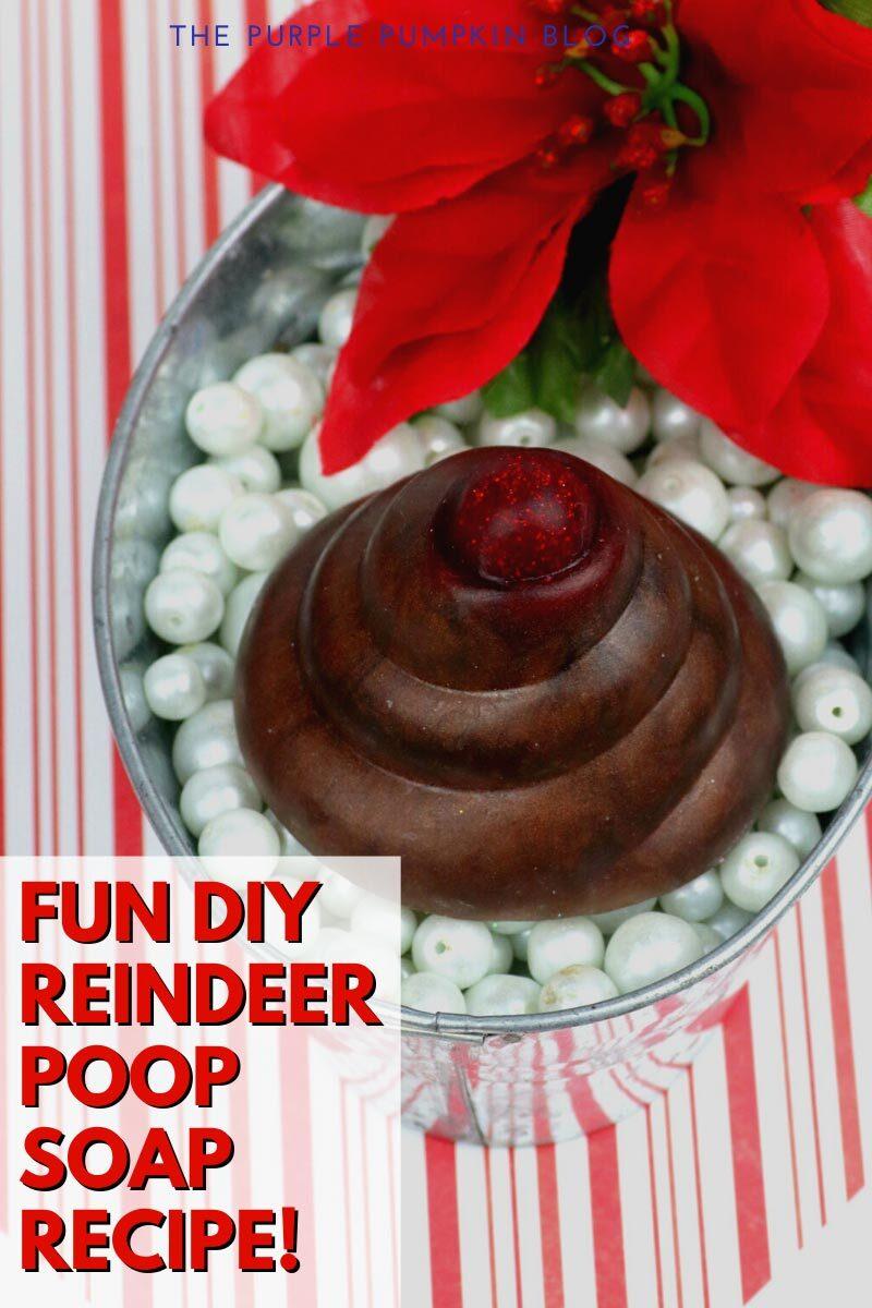 Fun DIY Reindeer Poop Soap Recipe