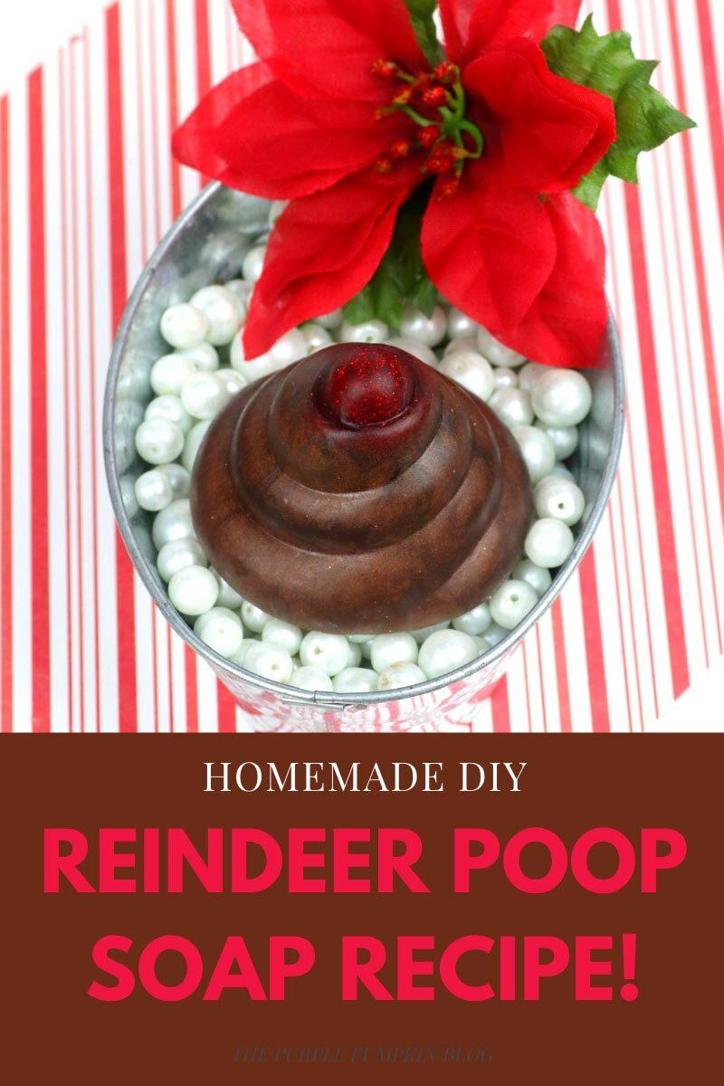 Homemade DIY Reindeer Poop Soap Recipe!