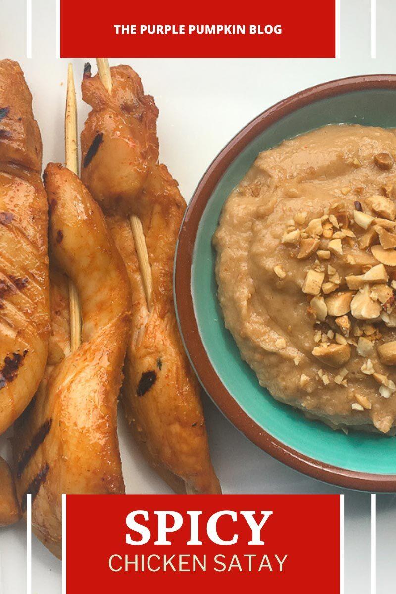 Spicy Chicken Satay