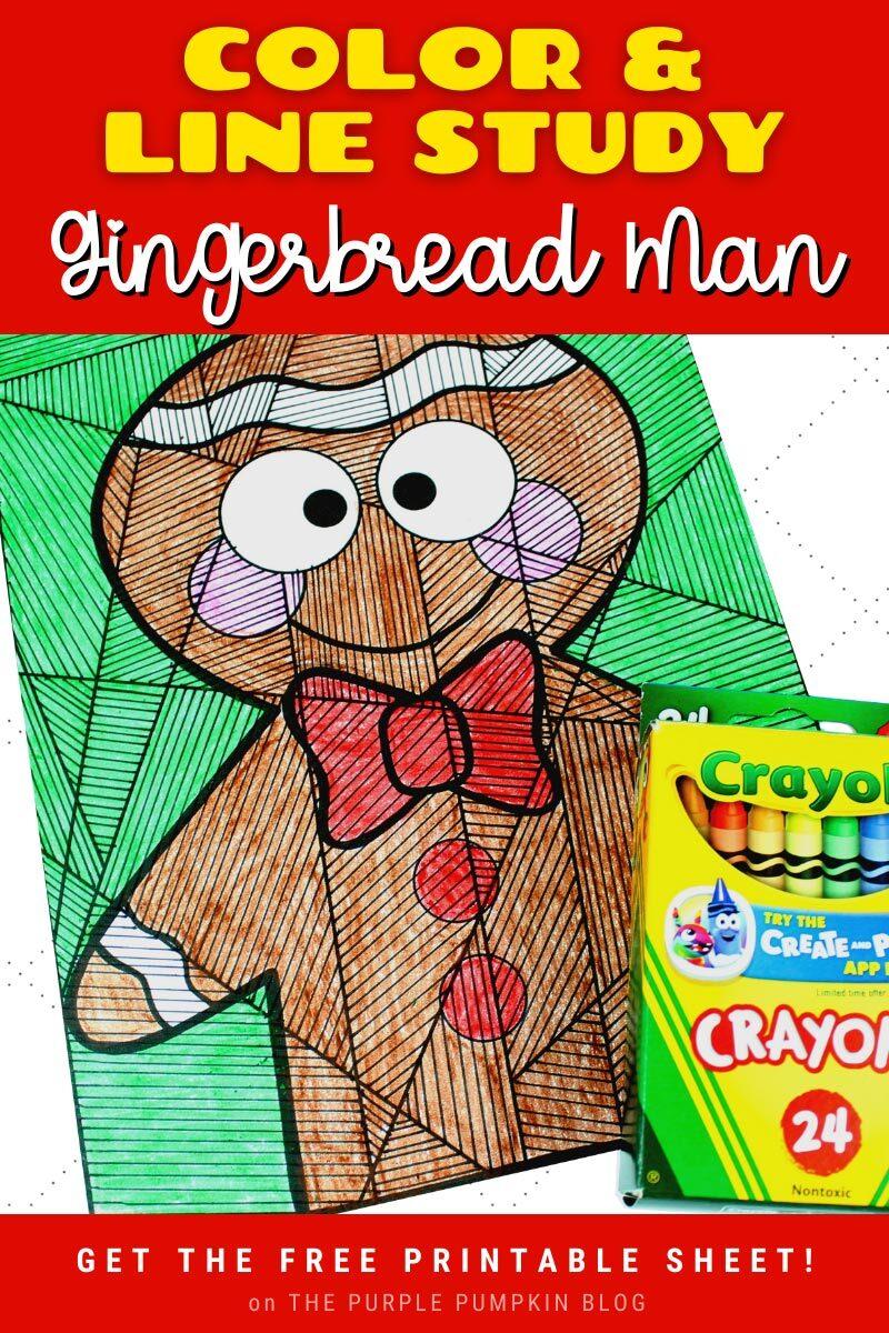Color & Line Study Gingerbread Man Sheet