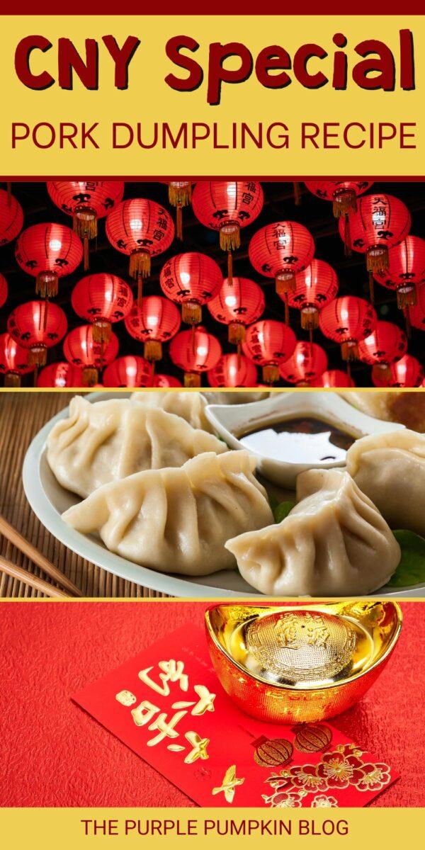 CNY Special Pork Dumpling Recipe