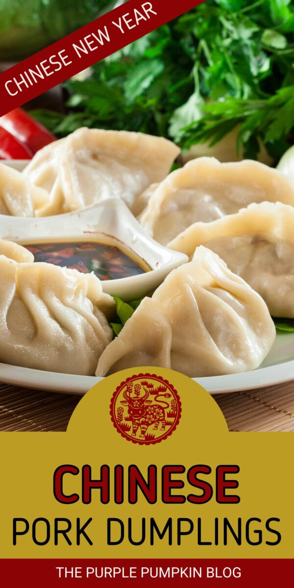 Chinese Pork Dumplings for Chinese New Year