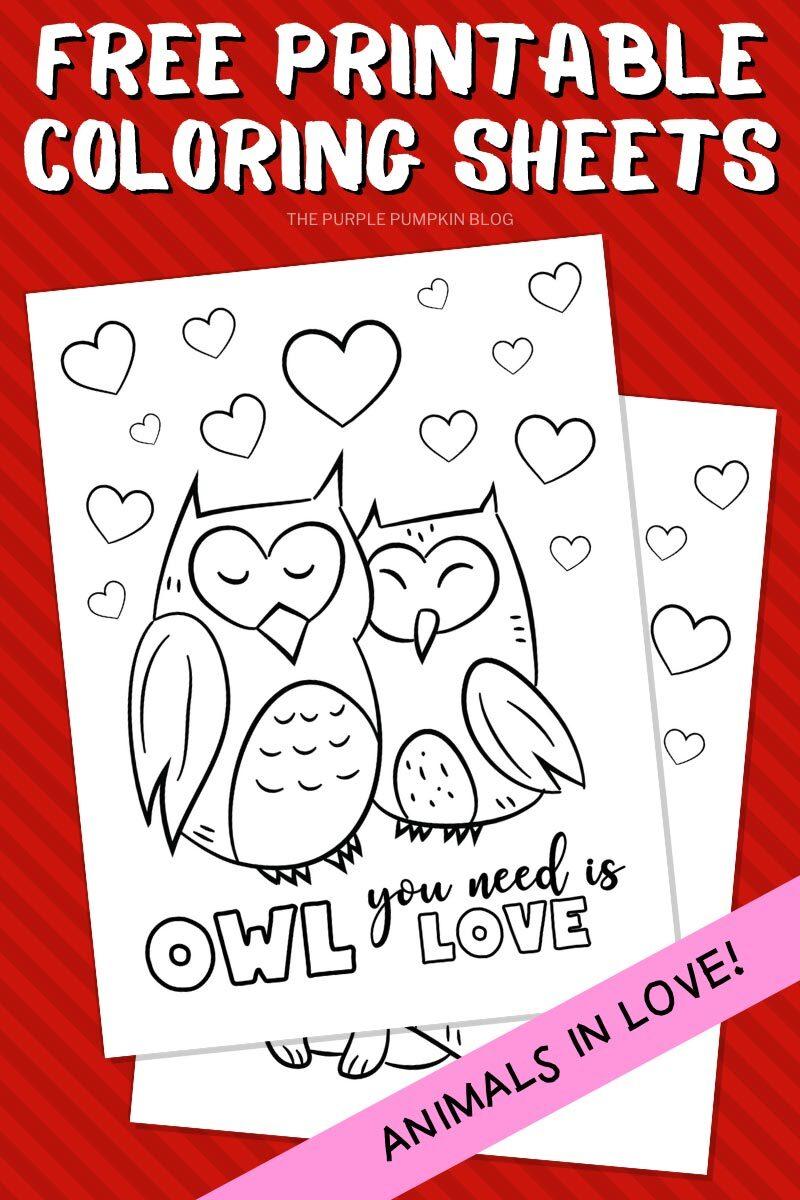 Free Printable Owl Coloring Sheets