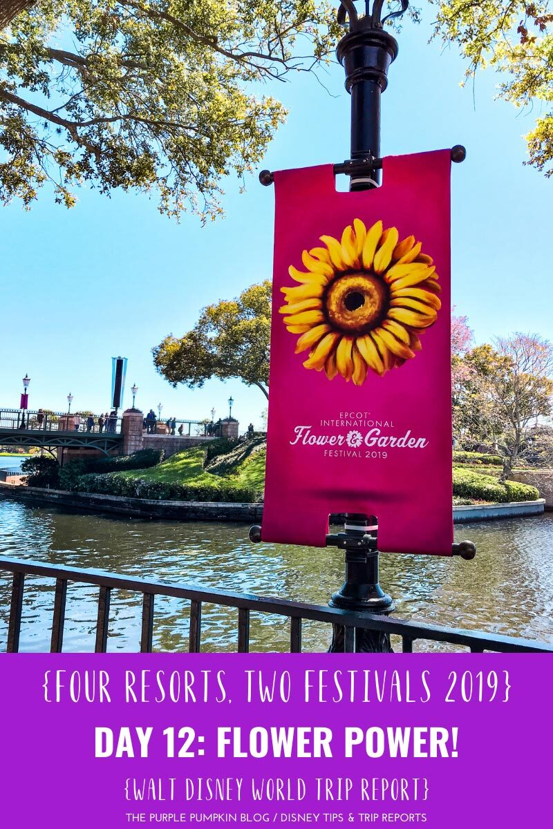 Day 12: Flower Power! / Four Resorts, Two Festivals 2019