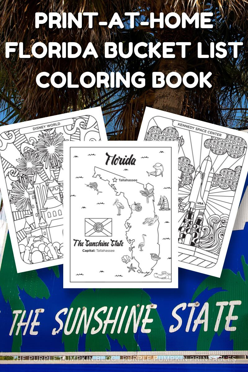 Print-at-Home Florida Bucket List Coloring Book