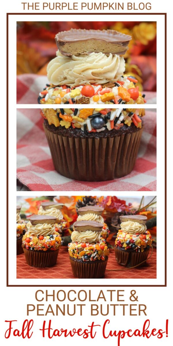 Chocolate & Peanut Butter Fall Harvest Cupcakes!