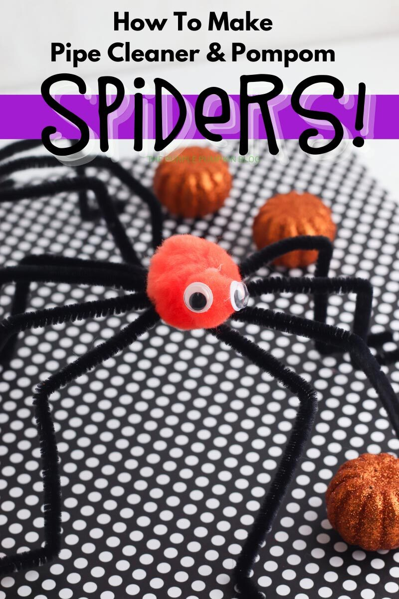 How to Make Pipe Cleaner & Pompom Spiders